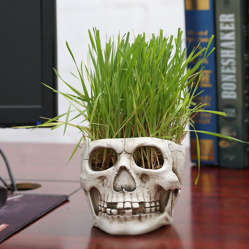 Creative Skull Shaped Flower Pots Personality Planters Vase Bowl Retro Home Decoration